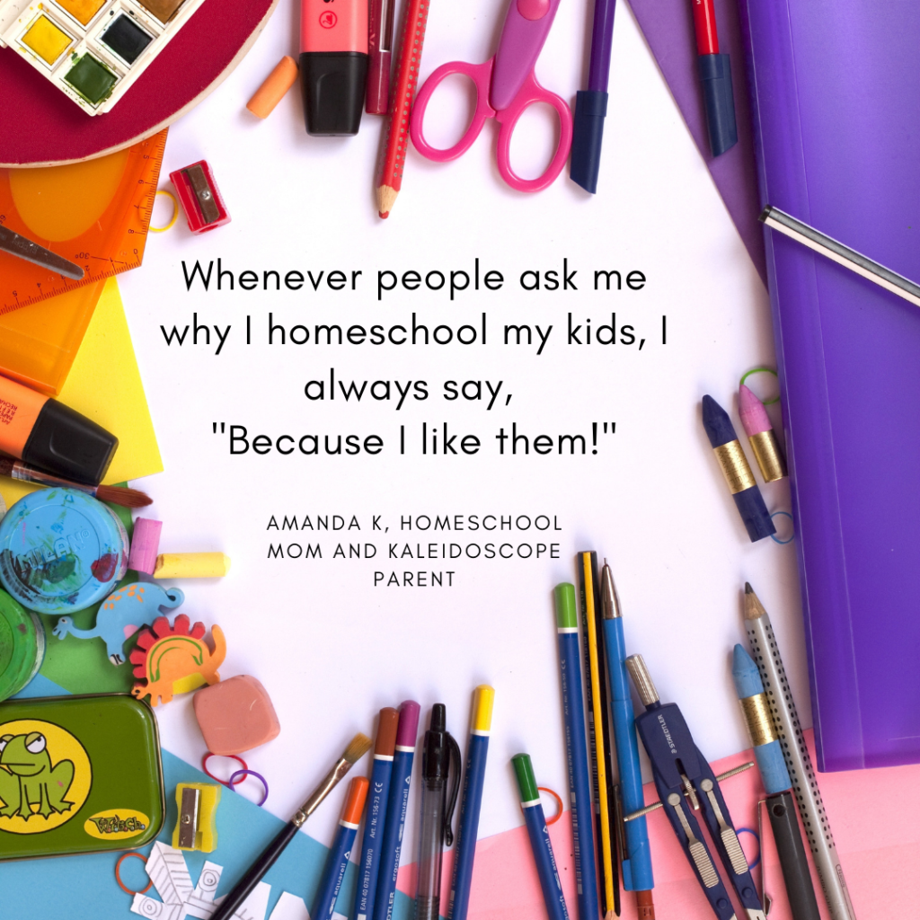 """Whenever people ask me why I homeschool my kids, I always say, """"Because I like them!"""""""