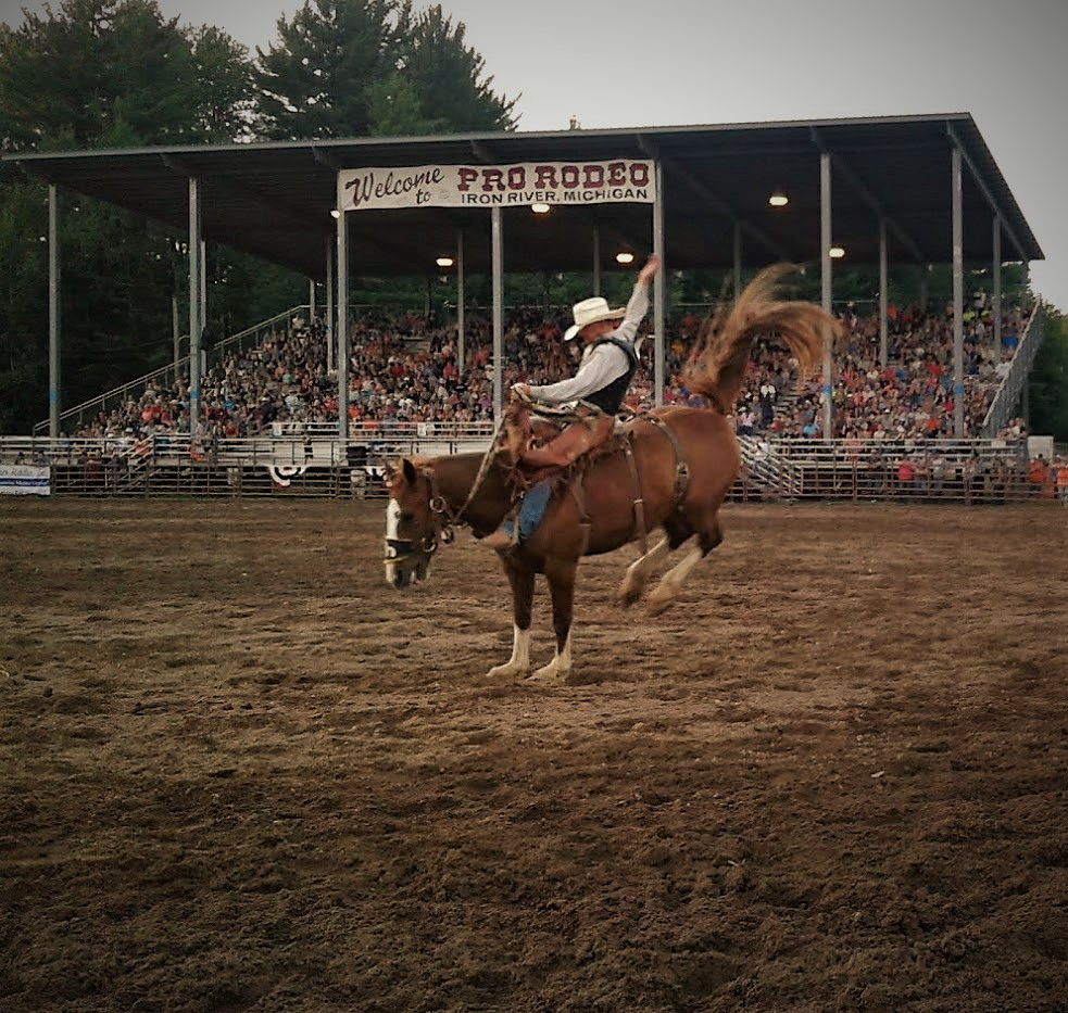 A cowboy rides a bucking saddle bronc.