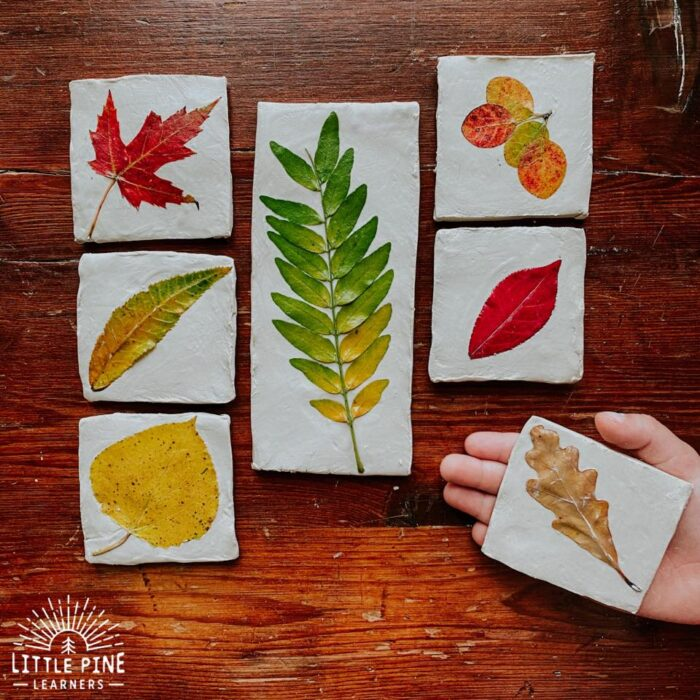 Clay tiles with colorful leaves embedded
